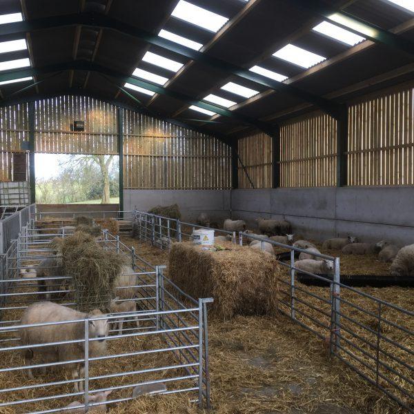 Oldbury Cottage Care Farm